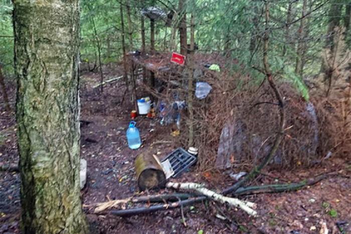 Секс в лесу милиция