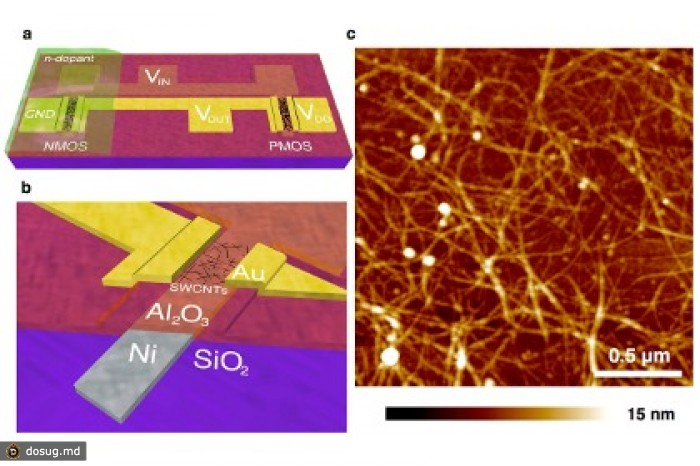 Схема инвертера и фото углеродных нанотрубок Схема: Geier, et al.  2013 American Chemical Society.
