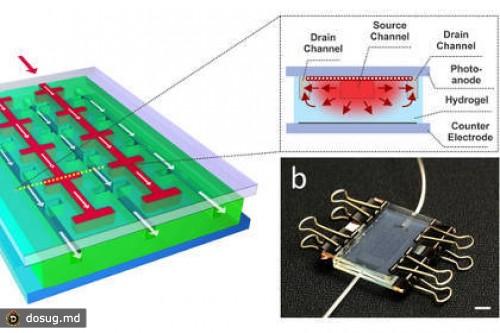 получение кремниевых пластин для солнечной энергетики про