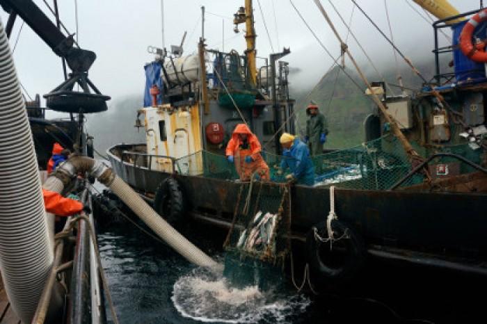 матрос на рыболовное судно без опыта работы спб создании термобелья