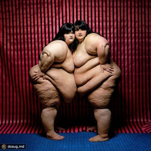 Самые толстые девушки порно онлайн 11 фотография